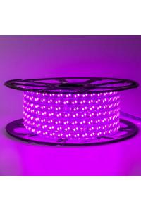 Лента светодиодная розовая 220V smd2835 120лед 12Вт герметичная