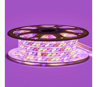 Led лента Multi-Color 220V smd2835 180LED/m 10Вт/m IP65, 1м